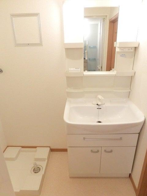 レジデンス ブロッコリーE棟 02030号室の洗面所