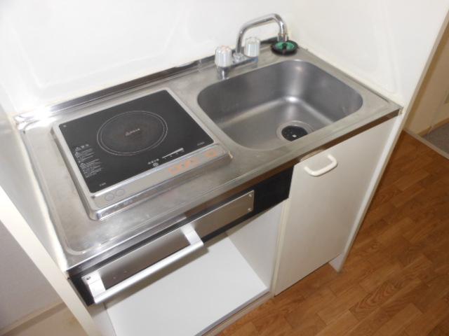 フラット若田 203号室のキッチン