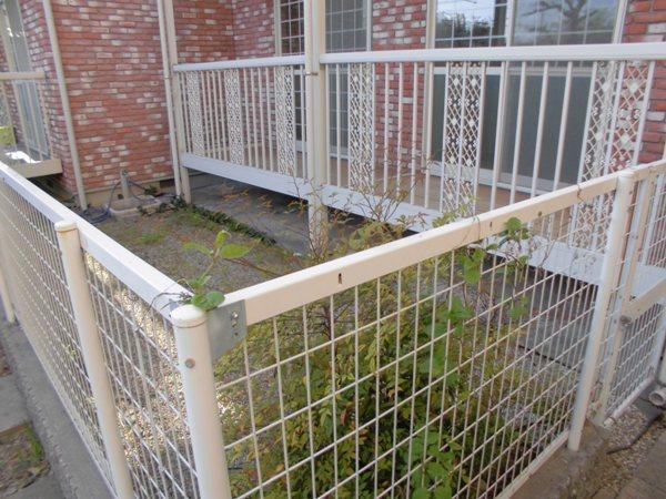 グレイスグリーン高畑 101号室の庭