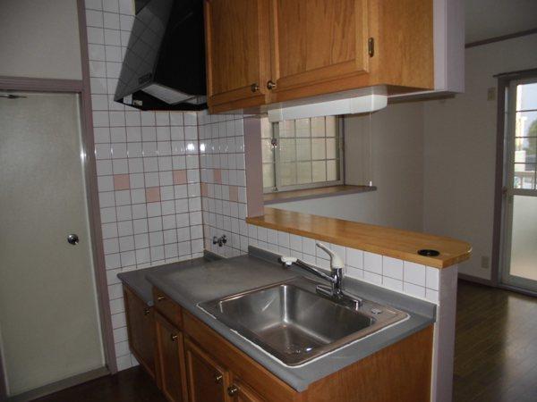 グレイスグリーン高畑 101号室のキッチン