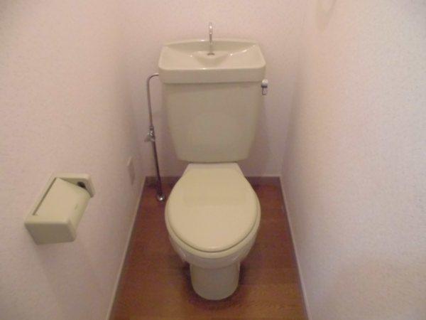 グレイスグリーン高畑 101号室のトイレ