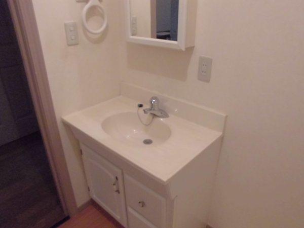 グレイスグリーン高畑 101号室の洗面所