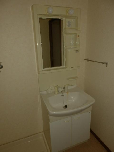 ハイステージ新橋 B 201号室の洗面所