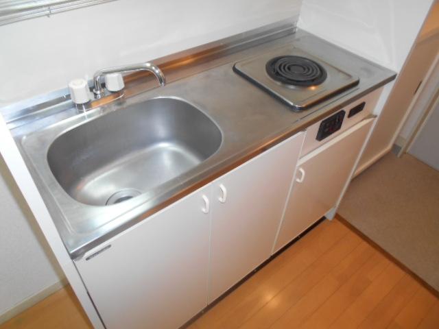 エクセルビラ住吉 204号室のキッチン