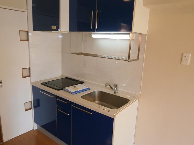 シャトーヨサミ 222号室のキッチン
