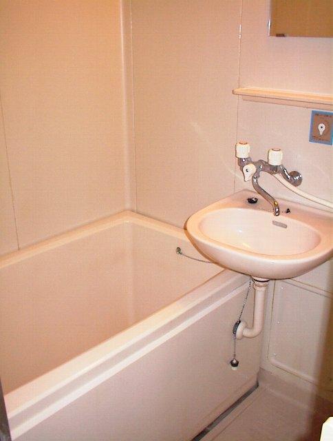 タウニー田尻 203号室の風呂