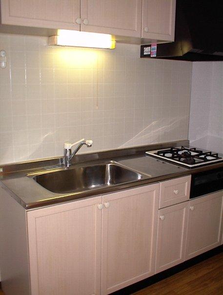 タウニー田尻 203号室のキッチン