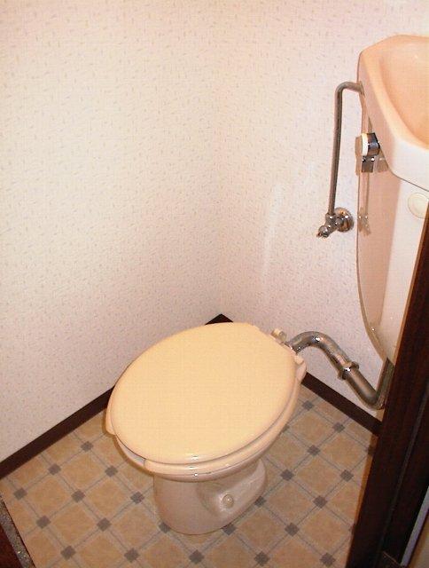タウニー田尻 203号室のトイレ