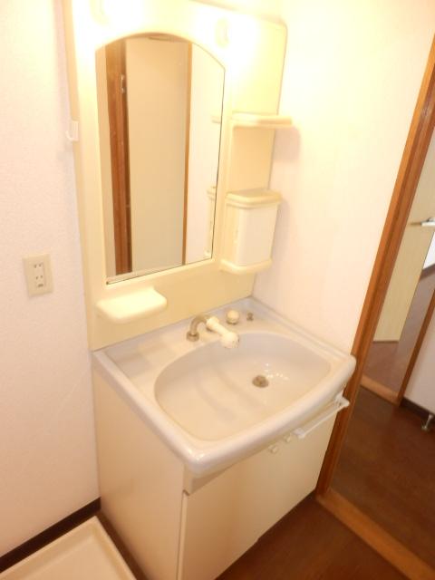 エレガンスヤダ 302号室の洗面所