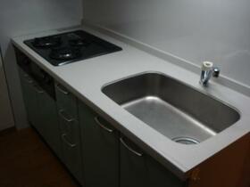 ハイリスベーネ池下 D-1号室のキッチン