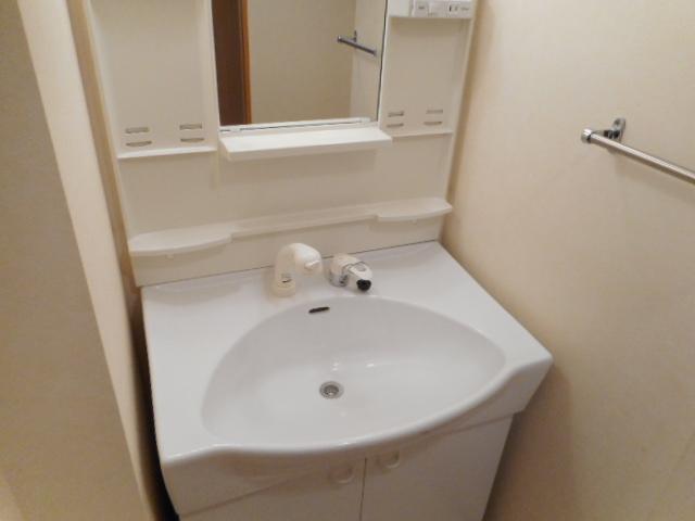 ドリームピア大蒲 403号室の洗面所