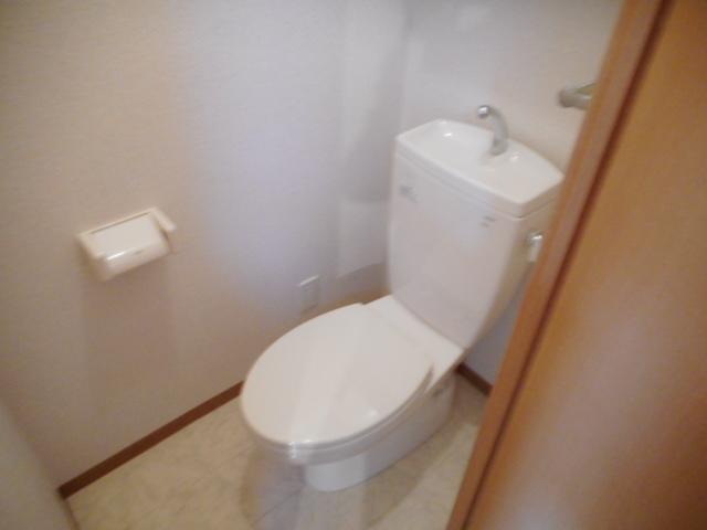 ドリームピア大蒲 403号室のトイレ
