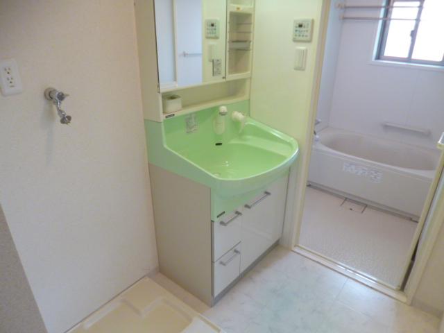 リンボックF 101号室の洗面所