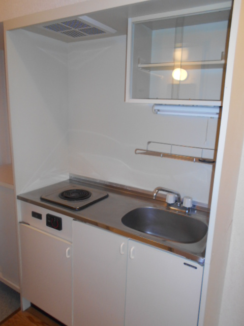 エクセルビラ住吉 107号室のキッチン