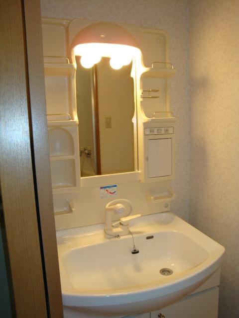 センチュリーパーク野田 203号室の洗面所
