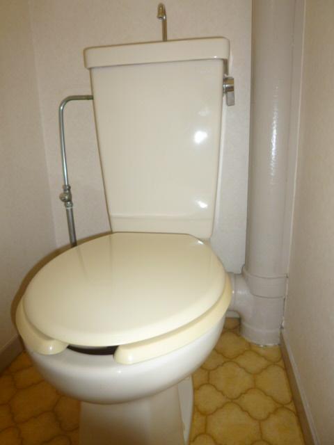 シティマンションウィング 201号室のトイレ