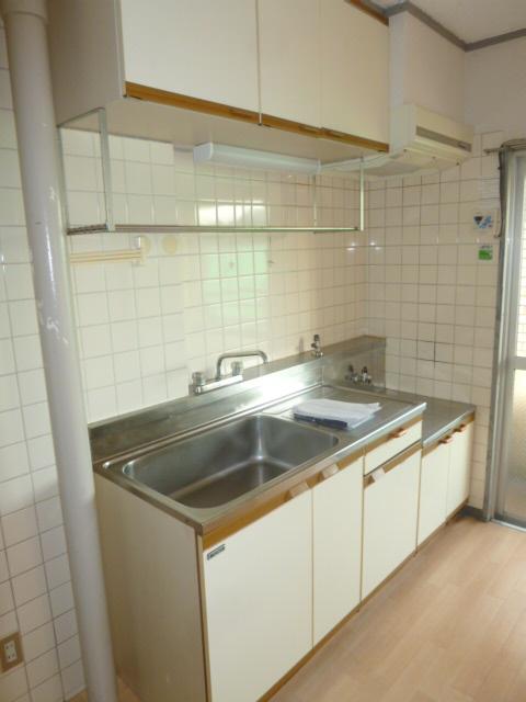 シティマンションウィング 201号室のキッチン