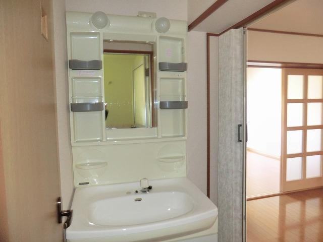 メゾン上条 205号室の洗面所