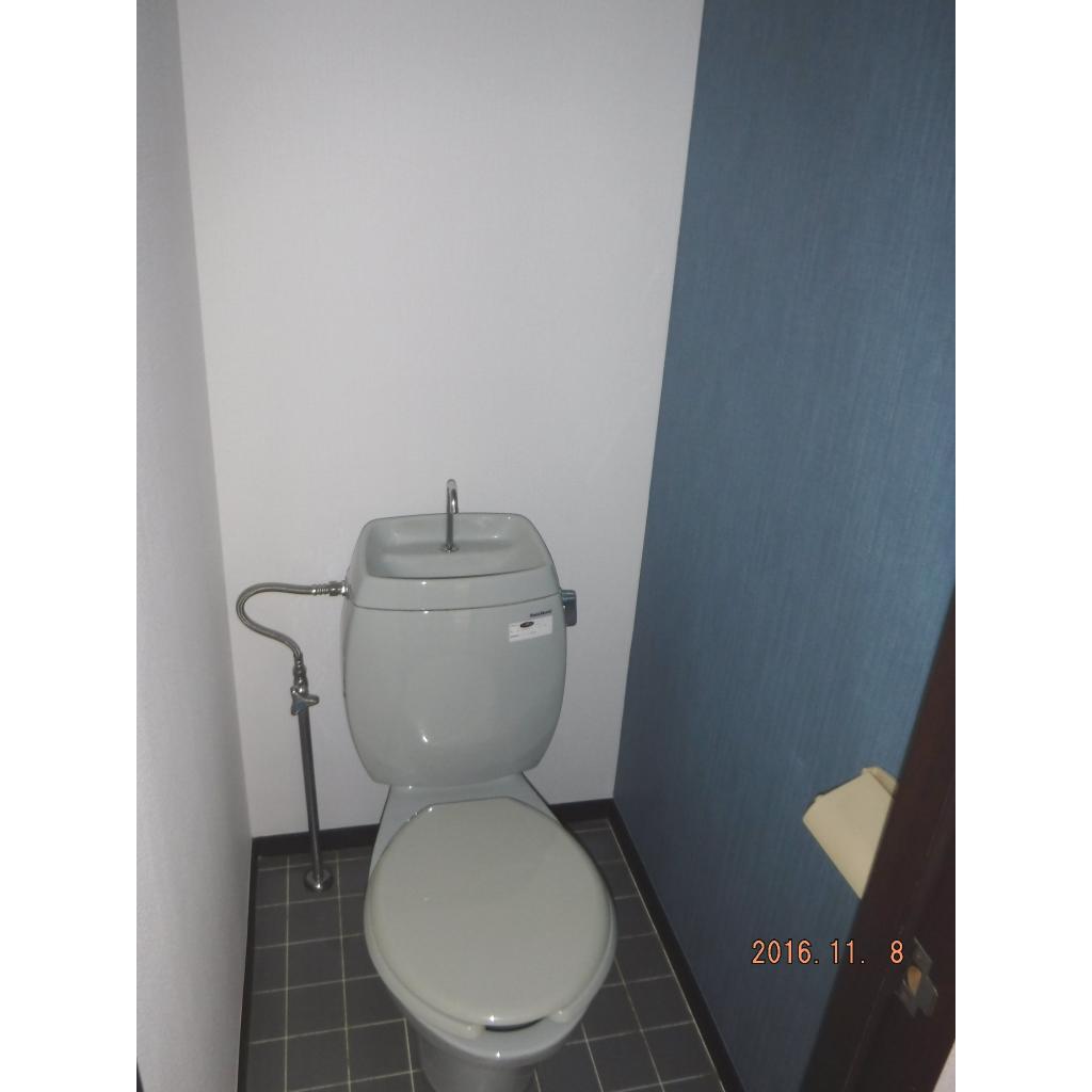 ロワールハイツ 102号室のトイレ