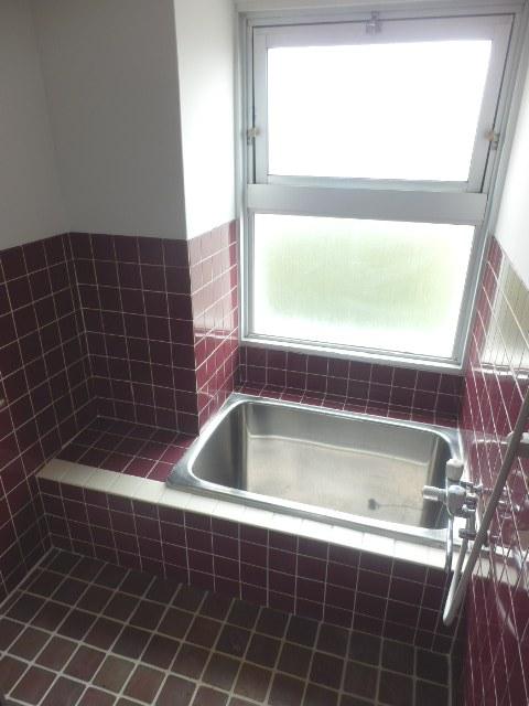 ネットプラスビル 501号室の風呂