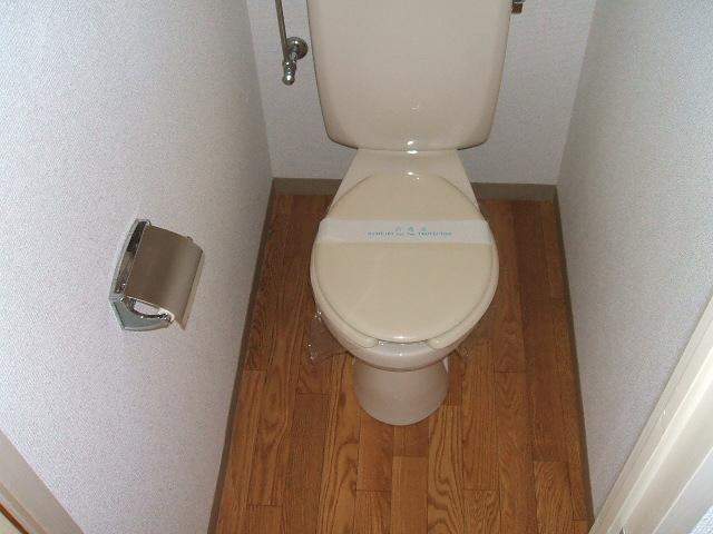 グランドハイツ布橋 105号室のトイレ