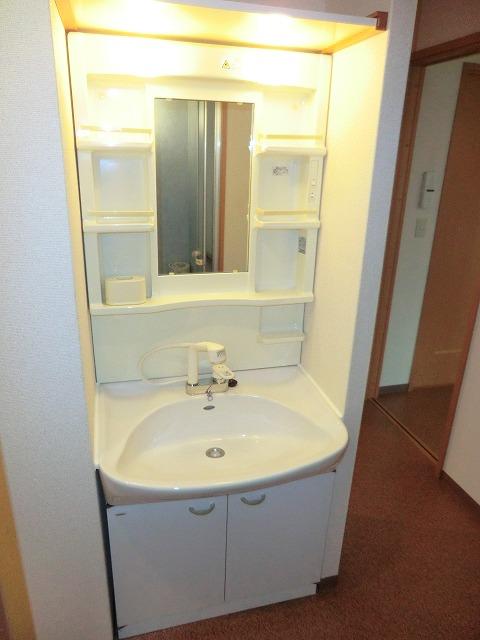 ラ・プラージュ 102号室の洗面所