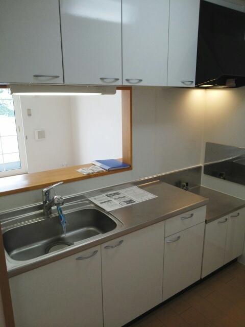 エレガント ヒルズ 02030号室のキッチン