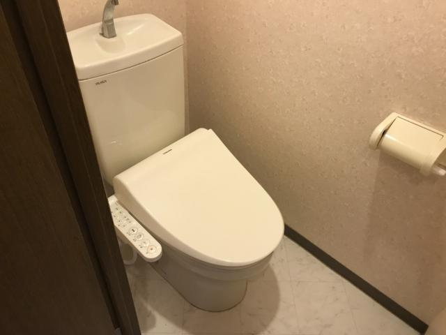 マルトヒルズ 202号室のトイレ