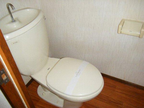 ロングアイランドヒルツ 204号室のトイレ