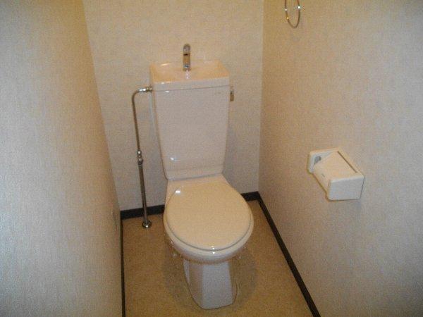 ブランドールJ 201号室のトイレ