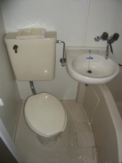 元目アーバンハイツ 307号室のトイレ