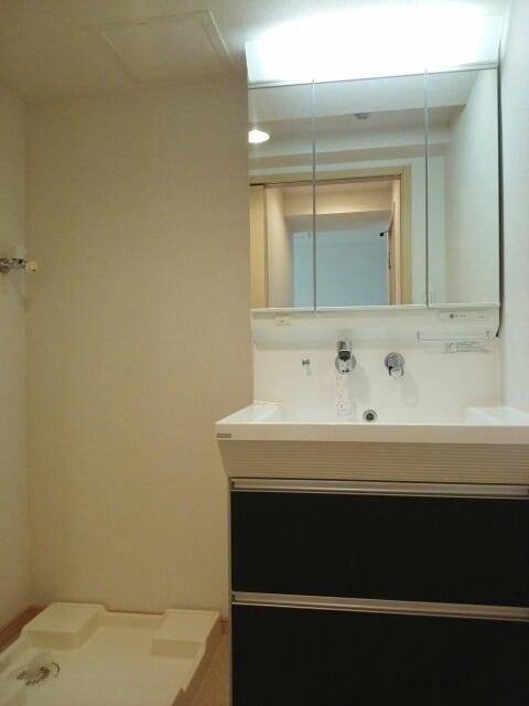 アクシア 01010号室の洗面所