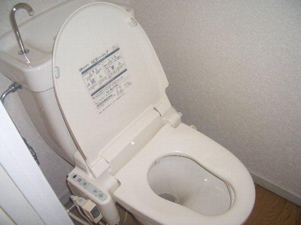 エステートピア石塚コーポ 201号室のトイレ
