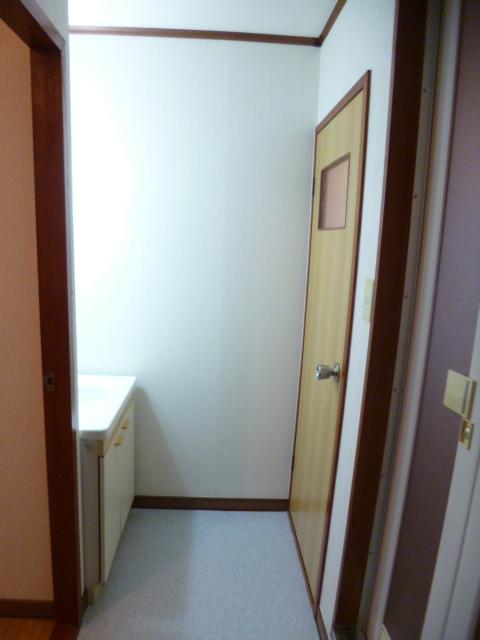 ドリームハイツカワセⅠ 202号室の洗面所