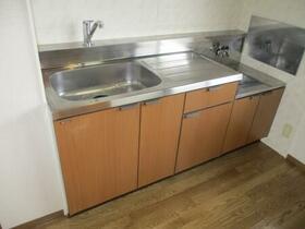 ヴィラフォーレ D 202号室のキッチン