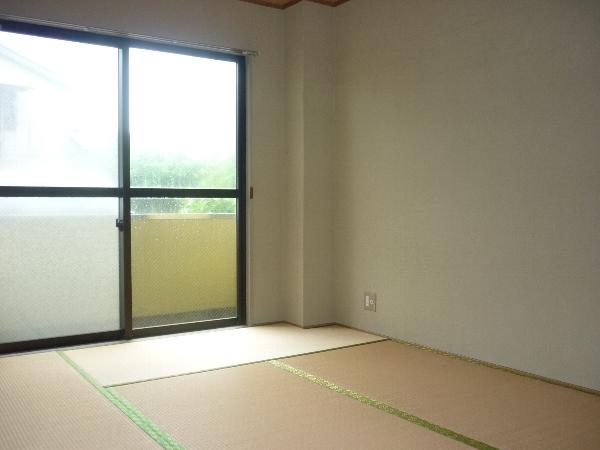 クレセントマンション 201号室のリビング