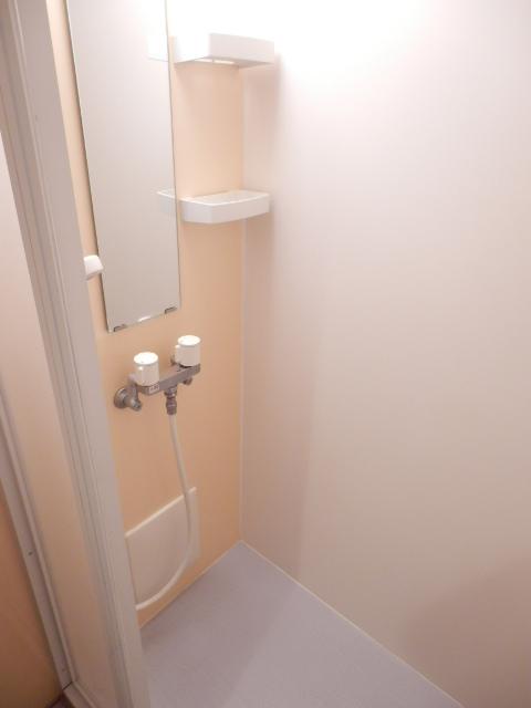 和地山ロイドアパート 102号室の風呂