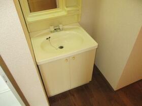 ヴィラフォーレ B 101号室の洗面所