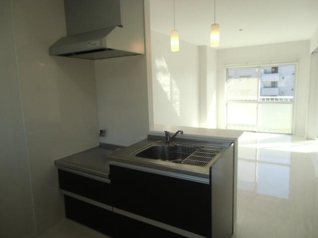 一ツ木ハイツ安井Ⅱ 203号室のキッチン