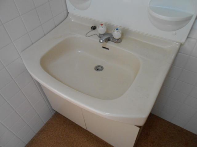 ラカーサ桃山 302号室の洗面所