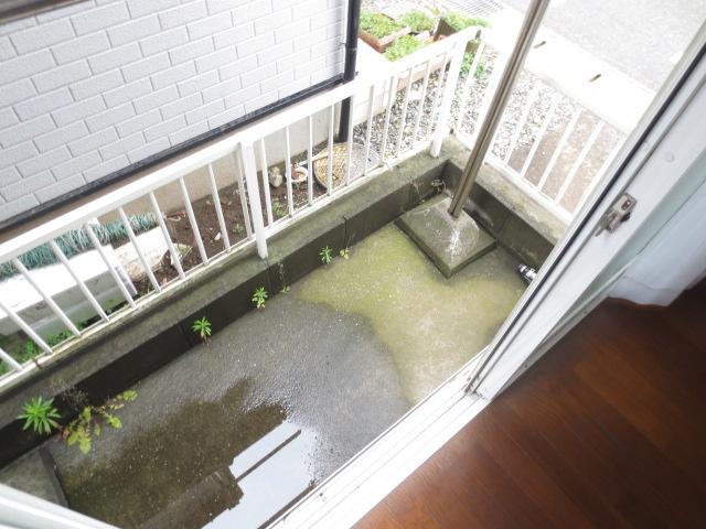 グランビュー 101号室の庭