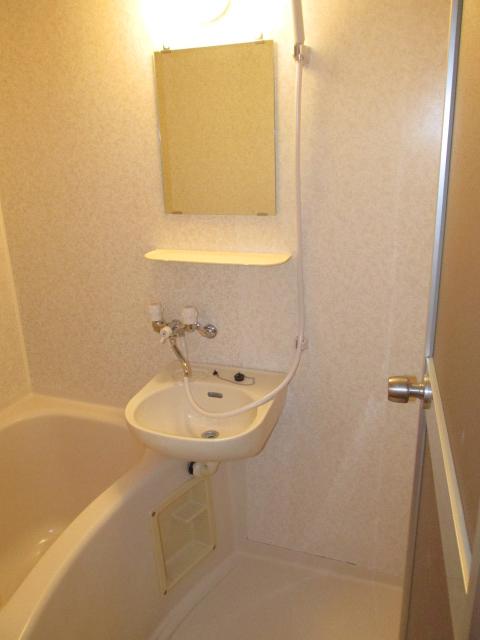 ハイツフーキ 202号室の洗面所