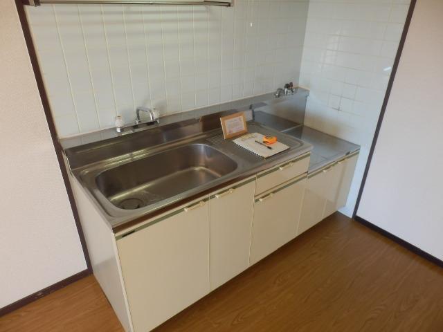 スカイコートウスイ 405号室のキッチン