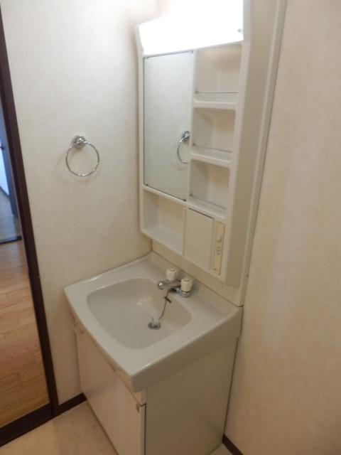 スカイコートウスイ 405号室の洗面所