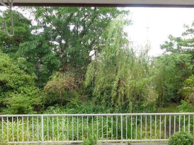 エルモリカワ 00102号室の設備
