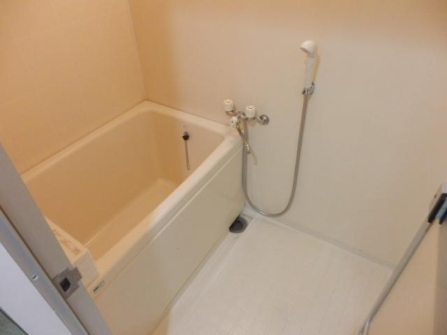 ヴィラージュ平瀬3号棟 301号室の風呂