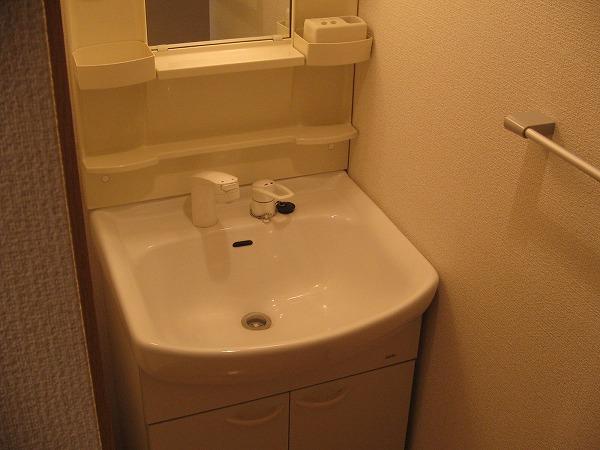 スパツィアーレ三軒茶屋 403号室の洗面所