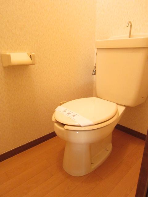 メゾンブランシュ 202号室のトイレ