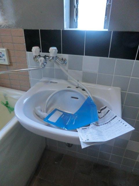 平田荘 202号室の洗面所