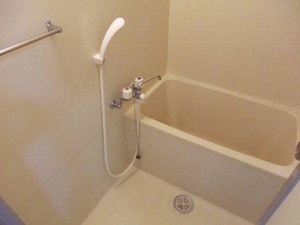 グリンビュー清水 102号室の風呂